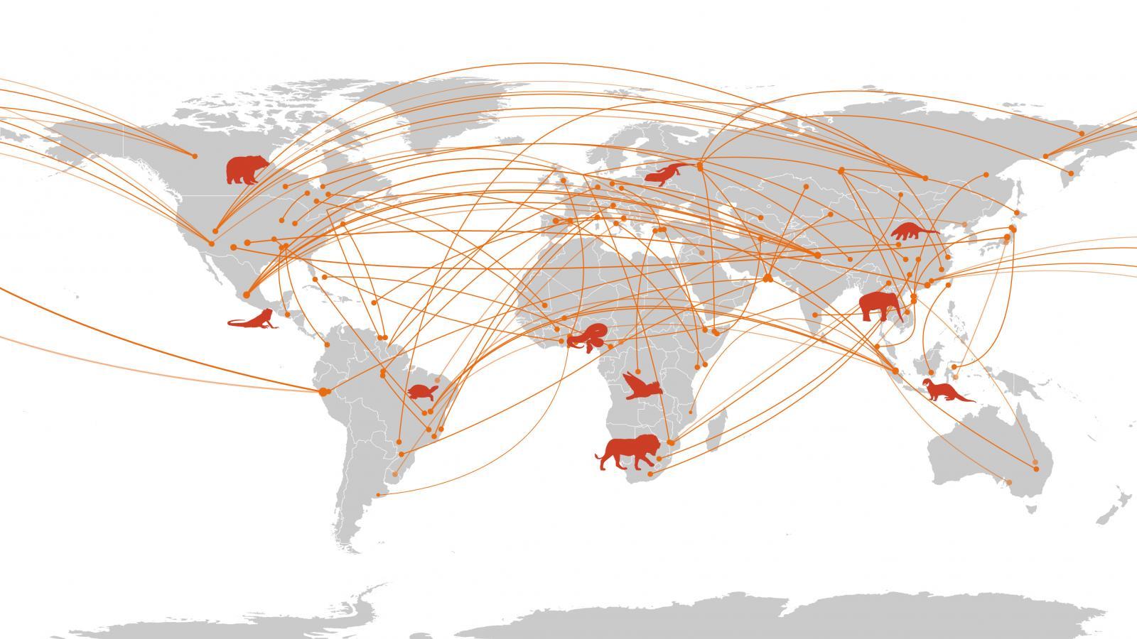 Trade Map 1